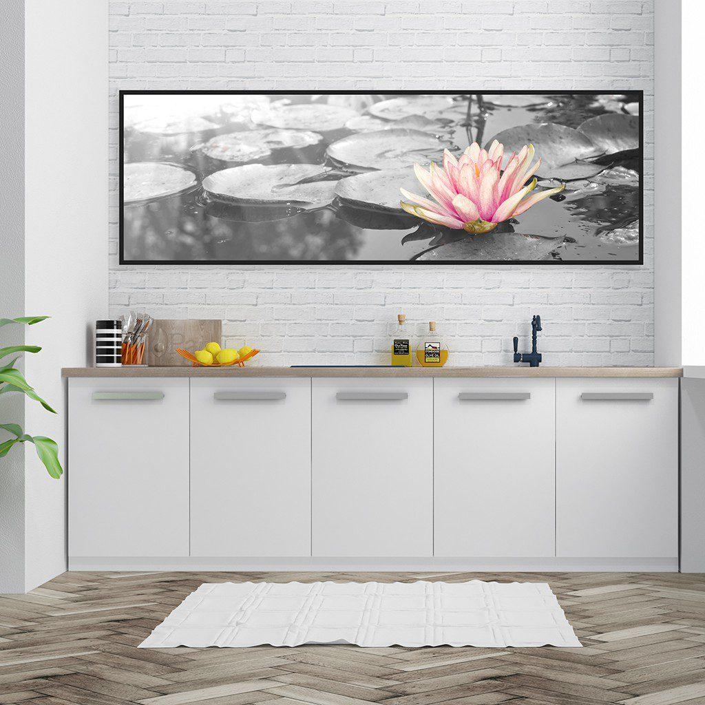 01 thiên nhiên hoa sen hồng đen trắng