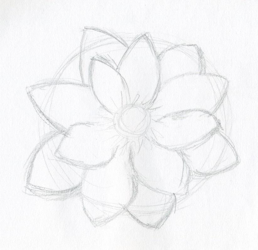 cach ve hoa sen 145