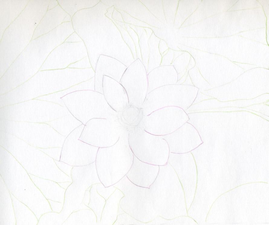 cach ve hoa sen 148