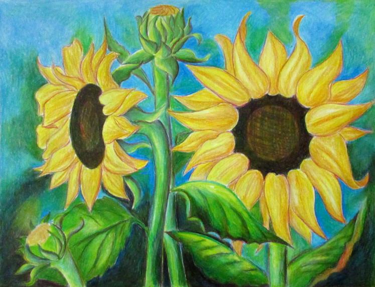 vẽ tranh hoa huong duong 130