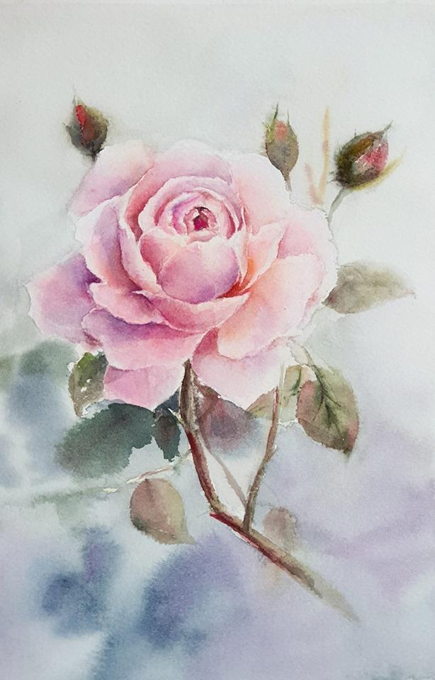 Cách vẽ tranh hoa hồng đẹp
