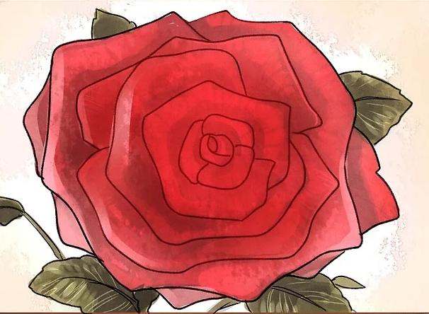 ve tranh hoa hong 129 1