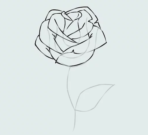 ve tranh hoa hong 16
