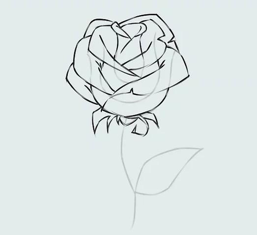 ve tranh hoa hong 17