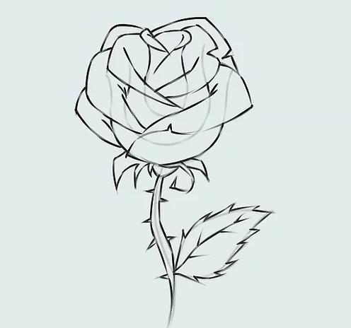 ve tranh hoa hong 18