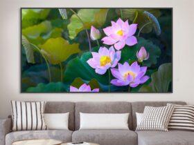 tranh hoa sen phong khach 16